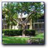 Fort Lauderdale Apartment Rental FL208